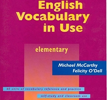 CAMBRIDGE VOCABULARY IN USE ELEMENTARY EBOOK