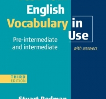 CAMBRIDGE VOCABULARY IN USE INTERMEDIATE EBOOK